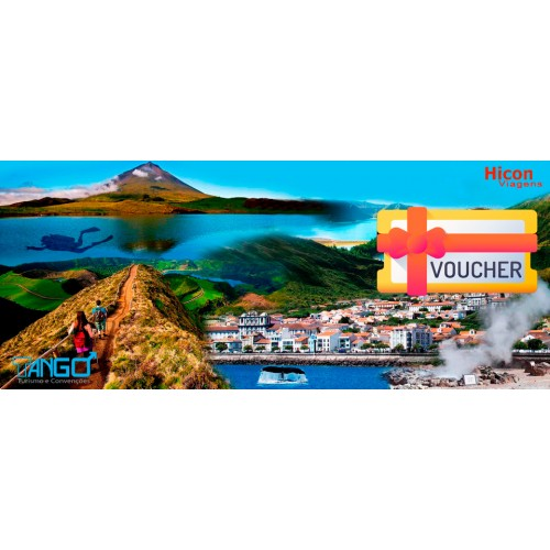 Voucher Hicon